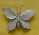 Butterfly Complex Origami