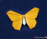 Butterfly Kids Origami