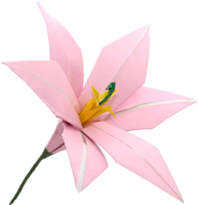 Charming Lily Origami