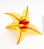 Red Yellow Origami Lily