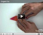 Preview Origami Videos