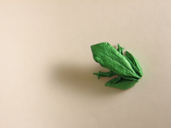 Realistic Frog Origami