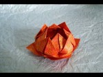 Pleasing Lotus Flower Origami