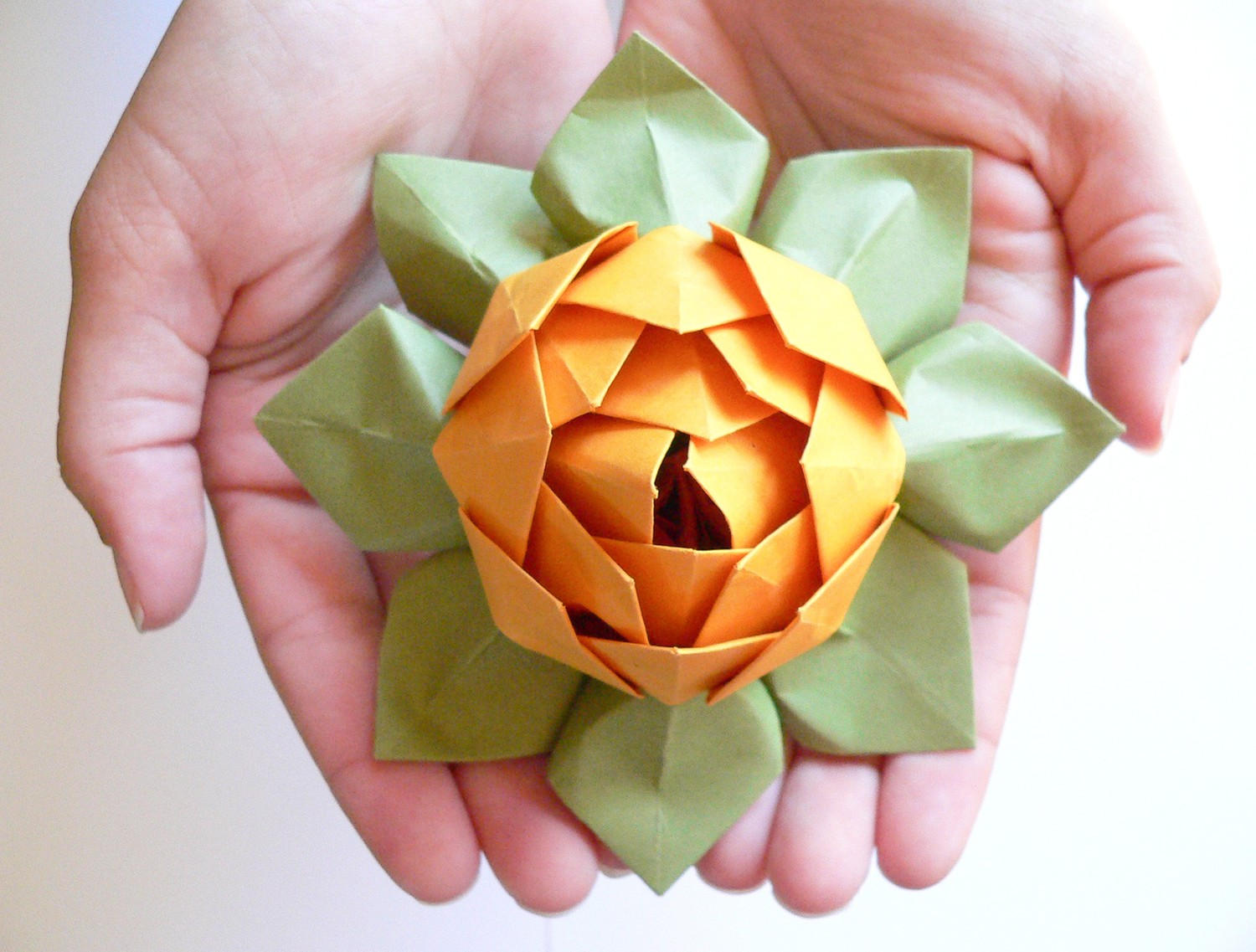 Appealing Origami Lotus Flower