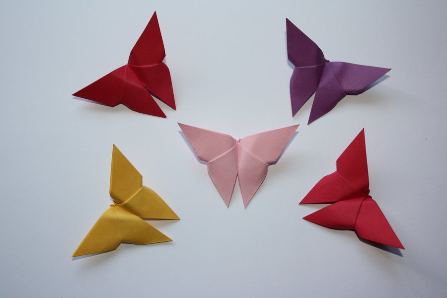 Colorful butterfly origami