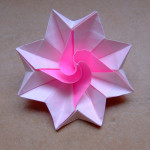 Delightful flowers origami