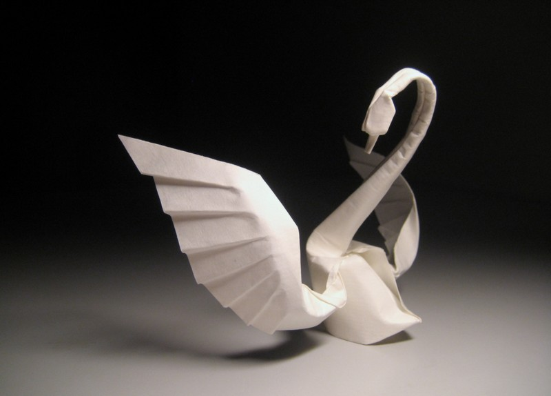 Check this origami 3d swan