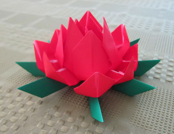 Divine origami lotus flower
