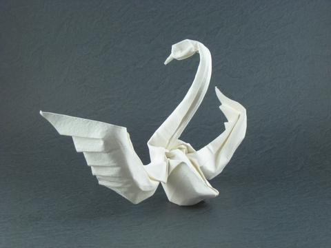 Lovely origami swan